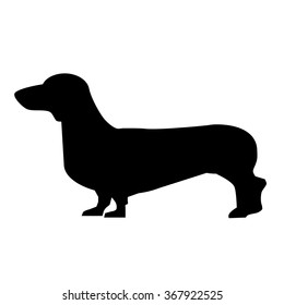 Daschund icon isolated on white background. Vector art.