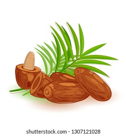 Dates fruit with palm tree branch on white background. Symbolic traditional Islam Ramadan food for Iftar for Muslims. Dried dates and palm leaves set.1