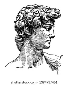David face of Michelangelos sculpture the biblical hero David vintage line drawing or engraving illustration