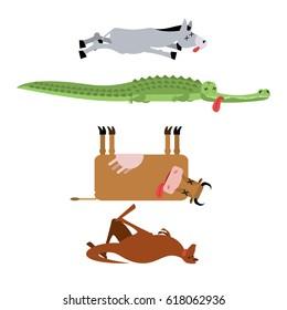 Dead animals set 3. Donkey and crocodile. Cow and kangaroo. animal is death. Corpse of Beast