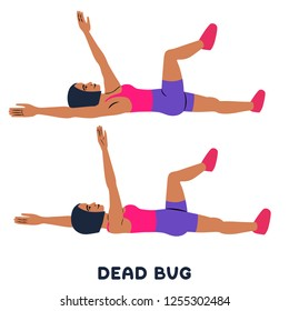 Image result for dead bug exercise