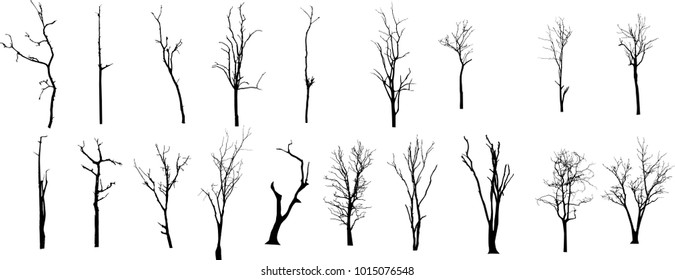 Dead Tree without Leaves Vector