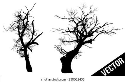 Dead trees on white background, vector illustration