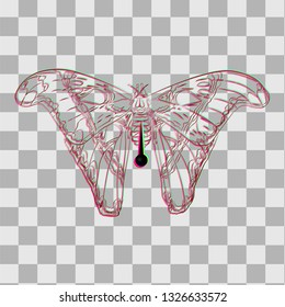 Dead tropical butterfly on a pin for collectors in trendy flat style with visual anaglyph stereoscopic effect isolated. Vector illustration in surrealism modern art style with chromatic aberration.