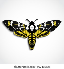 Deaths head moth yellow color vector illustration with skull