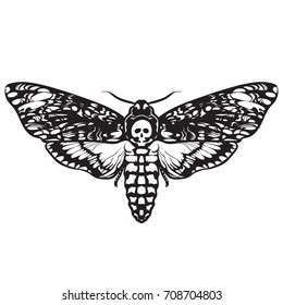 Death's-head hawk moth. Black and white Halloween decoration. Hand drawn vector illustration isolated on white background. Skull moth butterfly design for tattoo, t-shirt print, poster, coloring book.