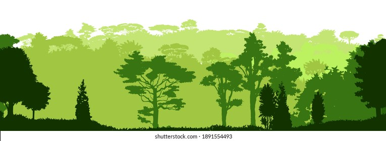Deciduous forest. Silhouette. Mature, spreading trees. Thick thickets. Hills overgrown with plants. Isolated on a white background. Vector