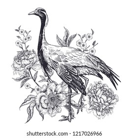 Decoration with bird and flowers. Realistic hand drawing of crane and beautiful peonies isolated on white background. Vector illustration art. Black and white sketch. Vintage oriental engraving.