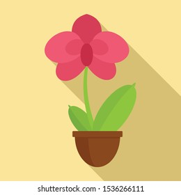 Decoration orchid icon. Flat illustration of decoration orchid vector icon for web design