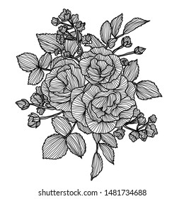Decorative abstract rose flowers, design elements. Can be used for cards, invitations, banners, posters, print design. Floral background in line art style