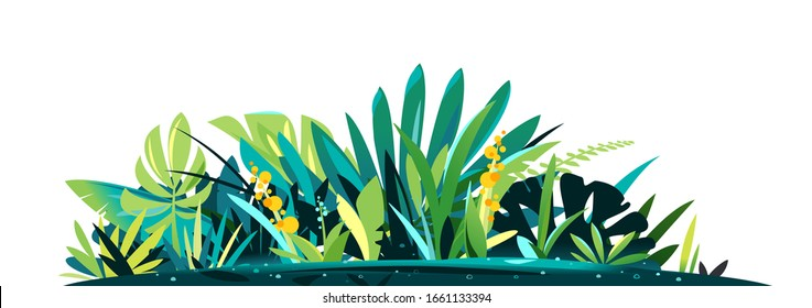 Decorative composition of different jungle plants on ground, group of green plants on the sunny lawn isolated, dense vegetation of the jungle