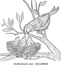Decorative doodle bird and nest with chicks. Coloring book page for adults. Vector illustration.