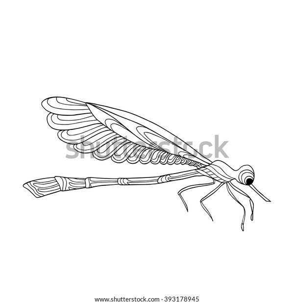 Decorative Dragonfly Coloring Book Adult Older Stock Vector