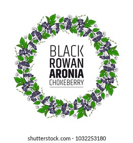 decorative element wreath of bunches of chokeberry. Aronia ornament