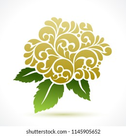 Decorative floral ornate vector illustration elderflower isolated on white background