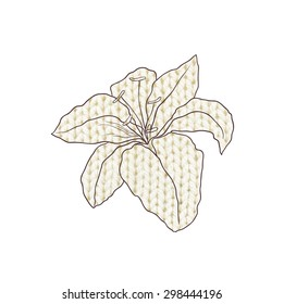 decorative flower lily- texture of knitting. vector image.