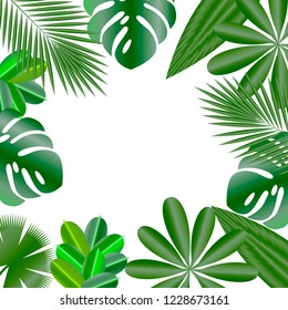 Decorative frame. Leaves of tropical plants. Isolated items. Monstera, ficus, palm tree Schefflera