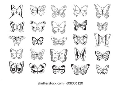 Decorative hand drawn butterflies line set.