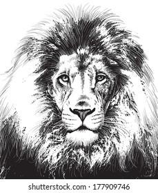 Decorative head of a lion