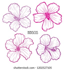 Decorative hibiscus flowers set, design elements. Can be used for cards, invitations, banners, posters, print design. Floral background in line art style
