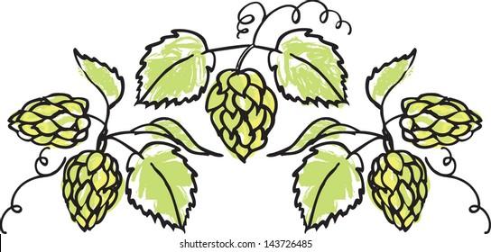 Decorative hops vector illustration