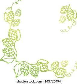 Decorative hops vector illustration border