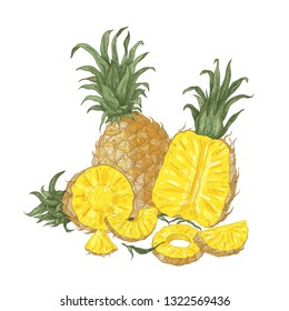 Decorative natural composition with whole and cut fresh organic pineapples and slices isolated on white background. Tasty exotic tropical juicy fruit. Realistic vector illustration in vintage style.