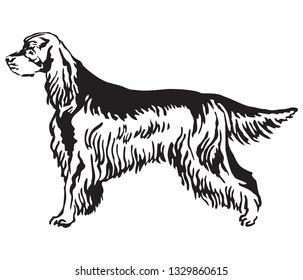 Decorative outline monochrome portrait of standing in profile Gordon Setter Dog, vector isolated illustration in black color on white background