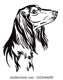 Decorative outline portrait of Saluki Dog looking in profile, vector illustration in black color isolated on white background. Image for design and tattoo.