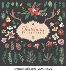 Decorative plant items. Christmas collection. Hand drawn illustration. Design elements.