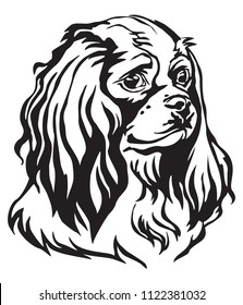 Decorative portrait of Dog Cavalier King Charles Spaniel, vector isolated illustration in black color on white background. Image for design and tattoo.