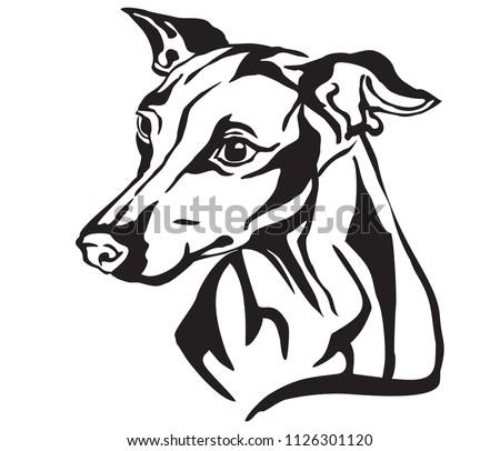 Decorative Portrait Profile Dog Italian Greyhound Stock Vector