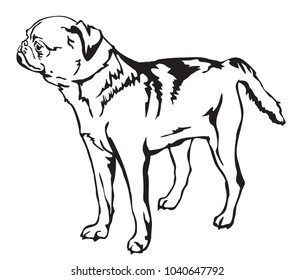 Decorative portrait of standing in profile Dog Petit Brabant, vector isolated illustration in black color on white background