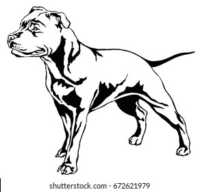 Decorative portrait of standing in profile dog Staffordshire Bull Terrier, vector isolated illustration in black color on white background