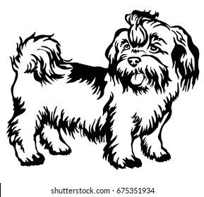 Decorative portrait of standing in profile dog shih-tzu, vector isolated illustration in black color on white background