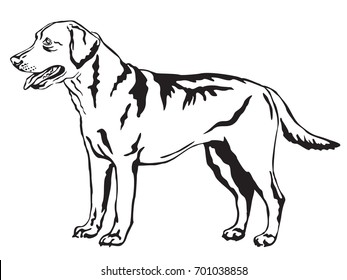 Decorative portrait of standing in profile Labrador Retriever, vector isolated illustration in black color on white background