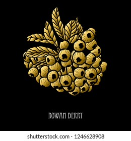Decorative rowan berries, design elements. Can be used for cards, invitations, banners, posters, print design. Golden berries