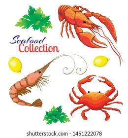 decorative seafood vector set. realistic sketched prawn or shrimp, lobster, crayfish and crab with lemon and bunch of parsley. cartoon vintage prawn, crawfish and crab. Bright shrimp, crab and lobster