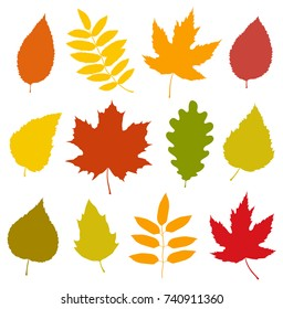 decorative set of isolated colorful autumn leaves silhouettes on white background