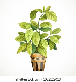 Decorative tropical tree with large leaves in a pot painted ethnic geometric ornaments isolated on a white background
