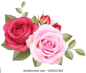 Decorative vintage roses on the corner of page. Pink flowers isolated on white backgound. Vector illustration