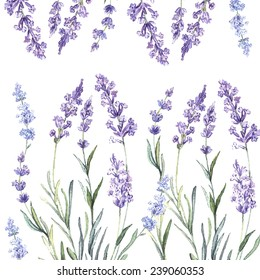 Decorative watercolor background of Lavender. Watercolor.Vector illustration. Illustration for greeting cards, invitations, and other printing projects.