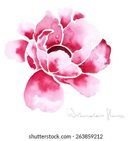 Decorative watercolor isolated flower for your design