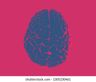 Deep blue  human brain hemispheres illustration in top view isolated on red background