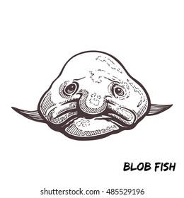 Deep sea fish blobfish sketch outline vector illustration isolated on white background