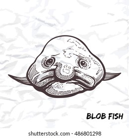 Deep sea fish blobfish sketch outline vector illustration isolated on white crumpled paper background