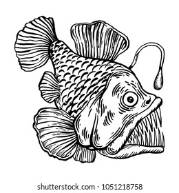 Deep water fish with lightern engraving vector illustration. Scratch board style imitation. Black and white hand drawn image.