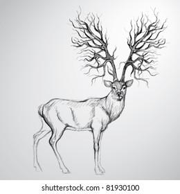 Deer with Antler like tree / Realistic sketch