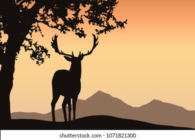 Deer with antler standing under a deciduous tree in a mountain landscape under an orange sky - vector with space for your text