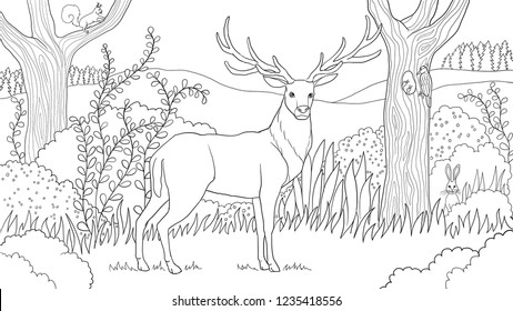 Free Printable Deer Coloring For Kids Book Tailed Kumon Resources ... | 280x462